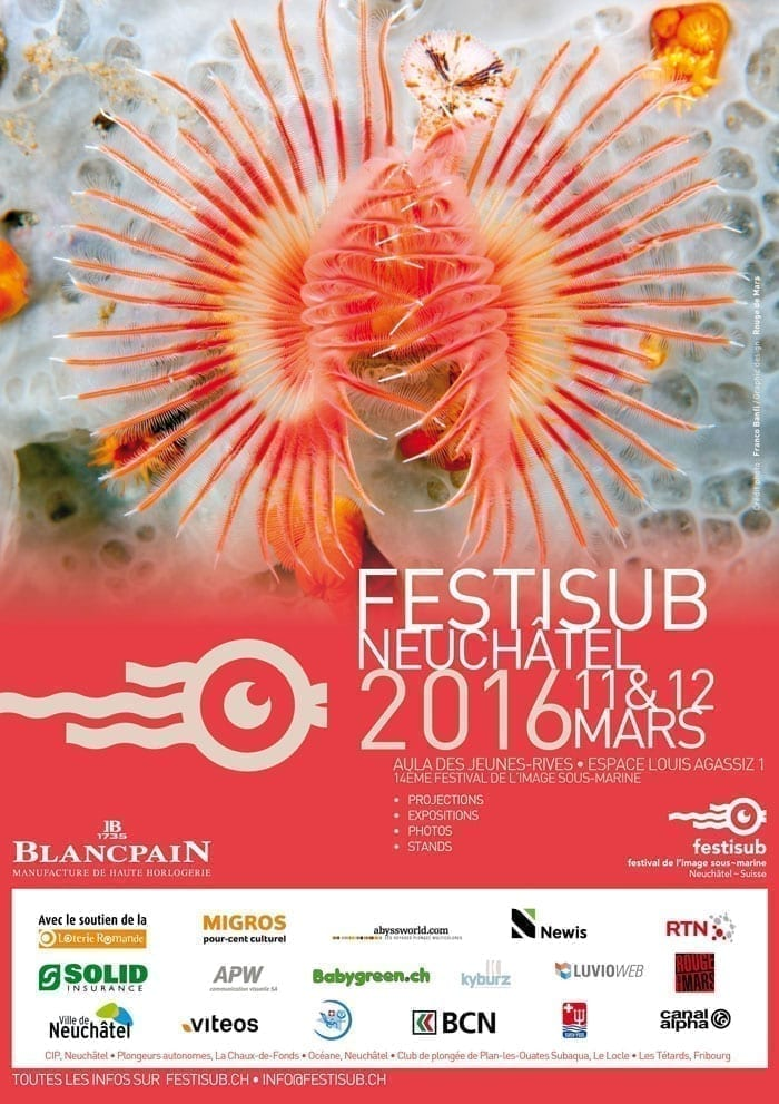 Affiche Festisub 2016
